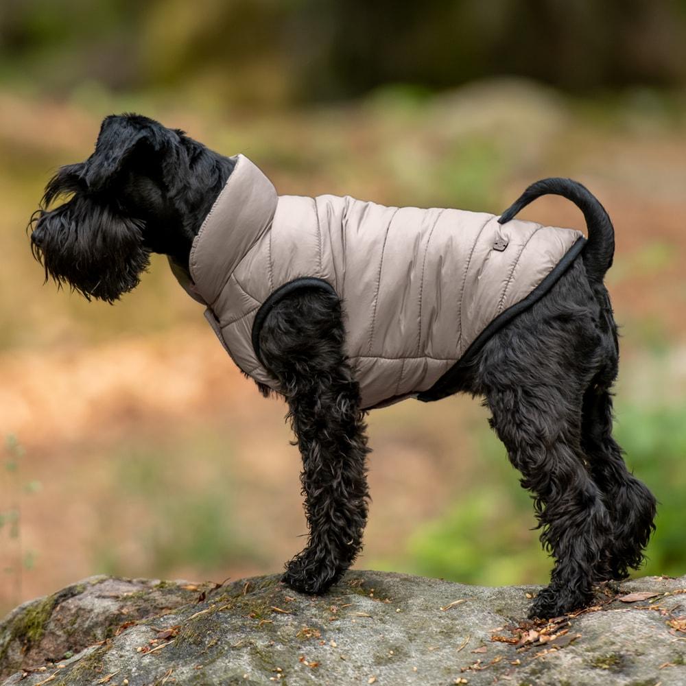 Hundedekken  Lucca JH Collection®