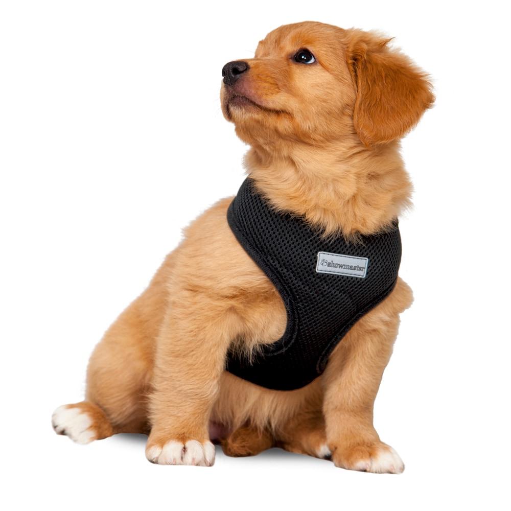 Hundesele  Puppy Showmaster®