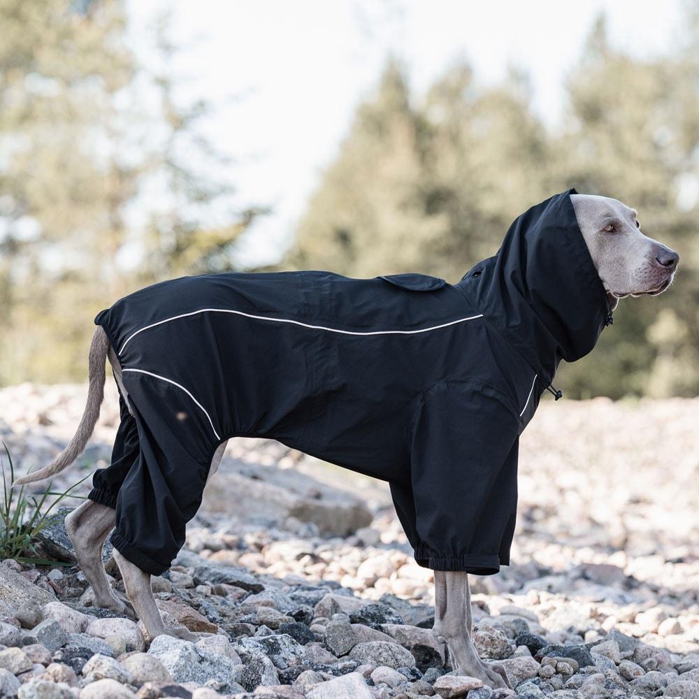 Hundeoverall  Evo Rain traxx®
