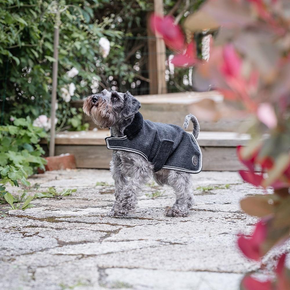 Hundedekken Ull Dover JH Collection®