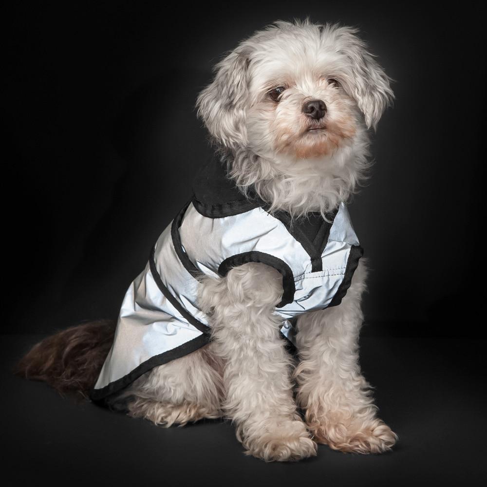 Hundedekken Refleks Bright Showmaster®