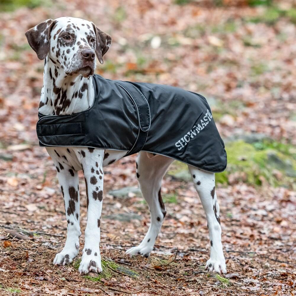 Hundedekken  Bella Showmaster®