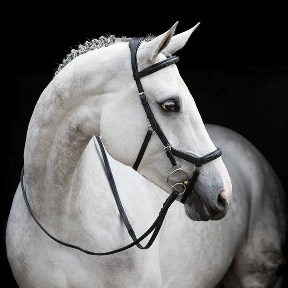 Hodelag  Micklem® Deluxe Competition Horseware®