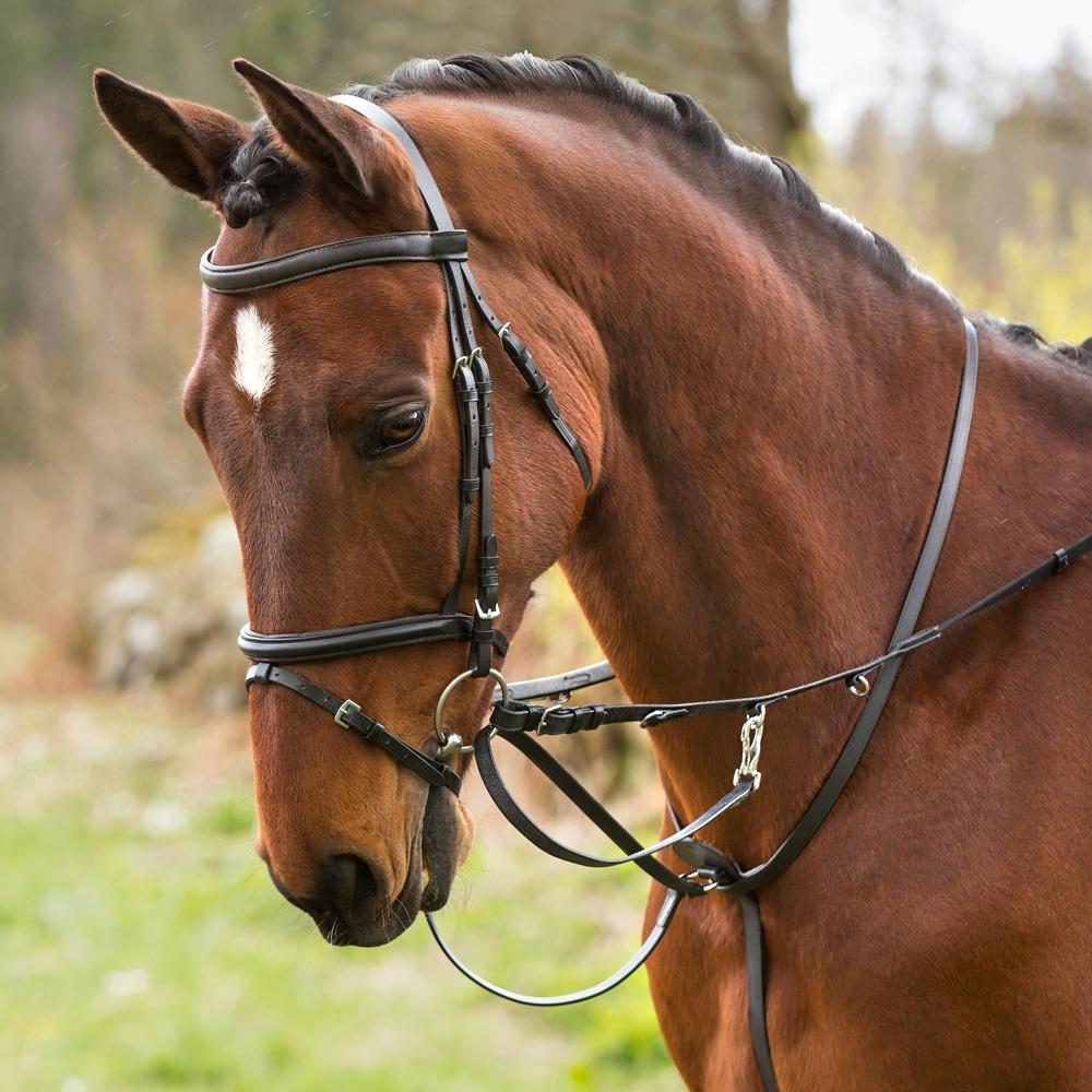 Thiedemantøyle Pony  Fairfield®