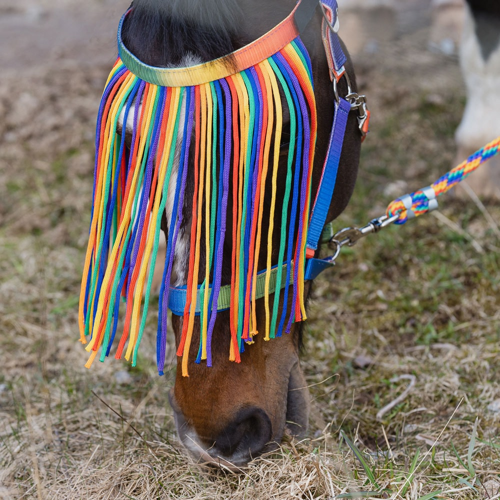 Fluepannebånd  Rainbow Fairfield®