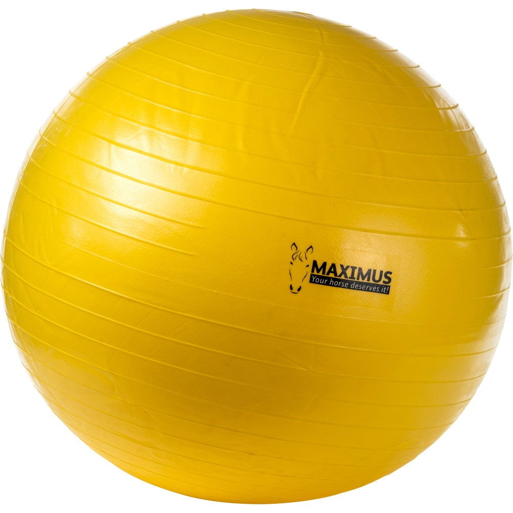 Lekeball  Maximus Ball