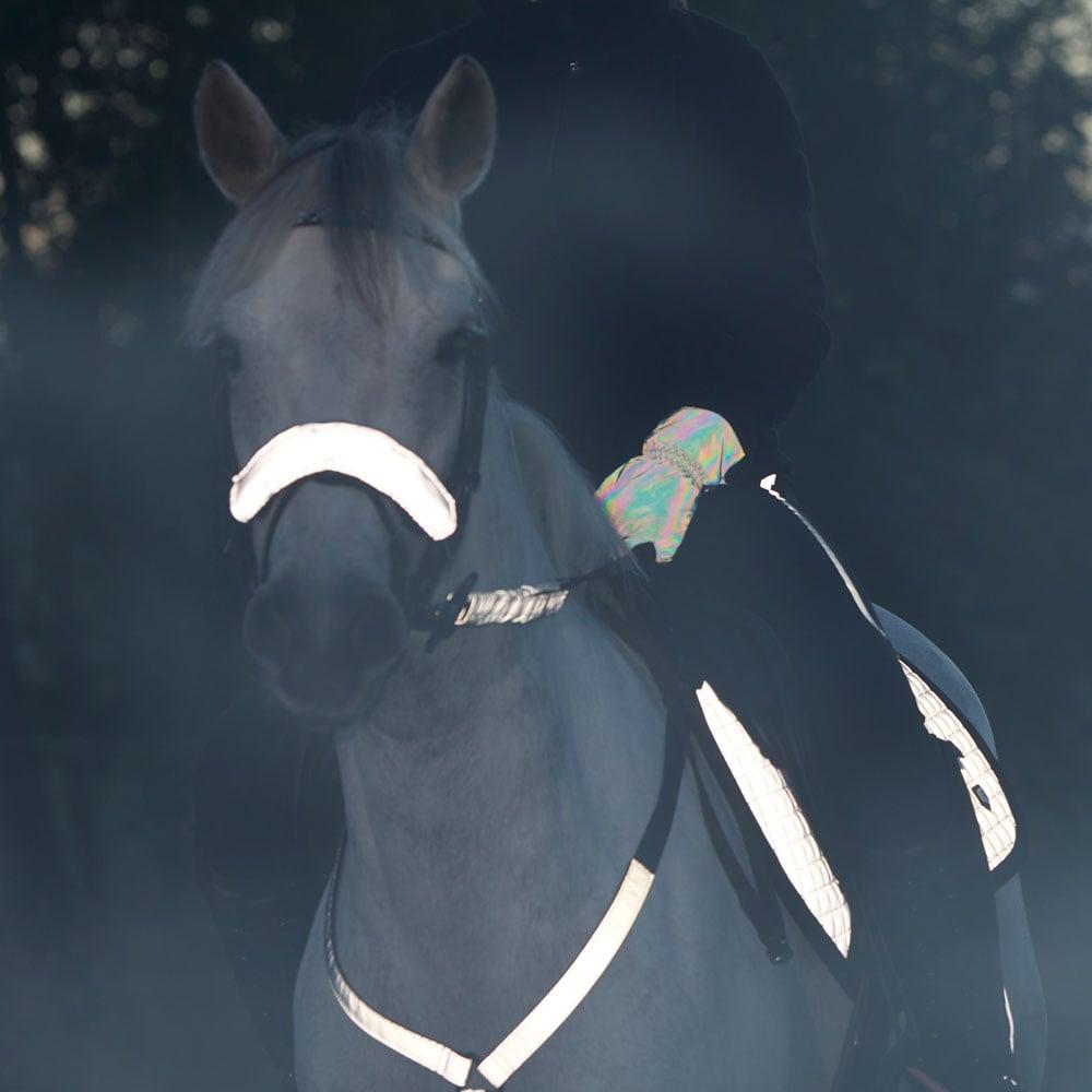 Neserefleks  Bright rider Fairfield®